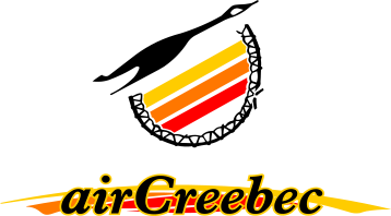 Alternative logo